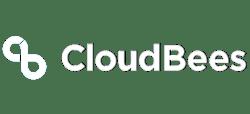 500x228-CloudBees-DNI-Partner-Logo